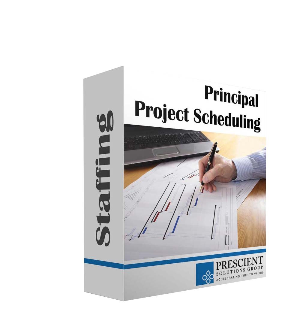Principal Project Planner/Scheduler