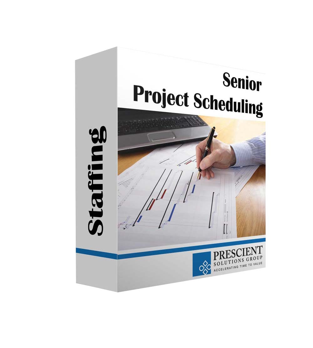 Senior Project Planner/Scheduler